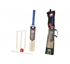 SIZE 3 CRICKET SET IN MESH CARRY BAG